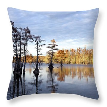 Sentinels Of The Lake Throw Pillow