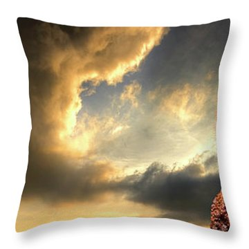 Sentry Duty Throw Pillow