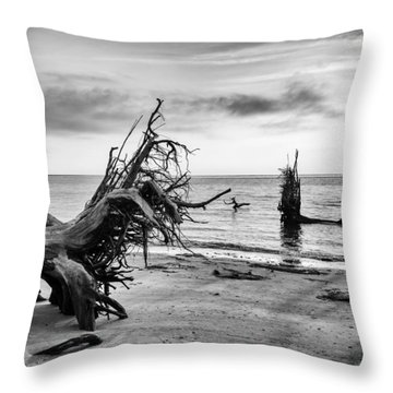 Separated Throw Pillow by Alan Raasch