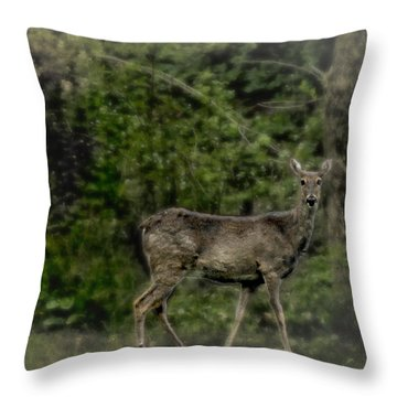 Separated And Diseased Throw Pillow
