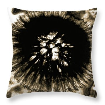 Sepia Dandelion Throw Pillow