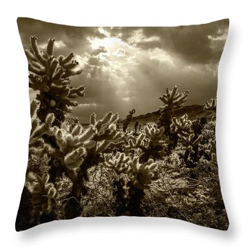 Throw Pillow featuring the photograph Sepia Tone Of Cholla Cactus Garden Bathed In Sunlight by Randall Nyhof