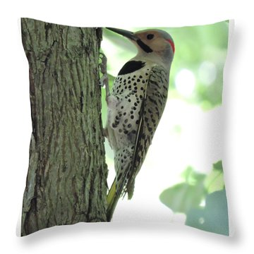 September Flicker Throw Pillow