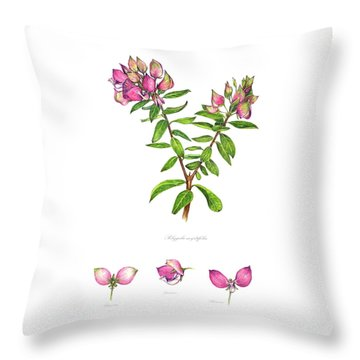 Throw Pillow featuring the painting Septemberbossie  Polygala Myrtifolia by Heidi Kriel