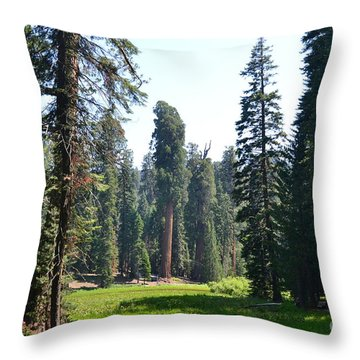 Sequoia National Forest Throw Pillow