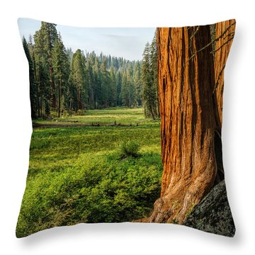 Sequoia Np Crescent Meadows Throw Pillow