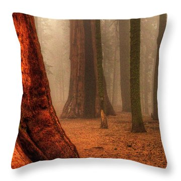 Sequoias Touching The Clouds Throw Pillow