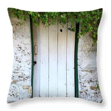 Serendipitous Door Throw Pillow