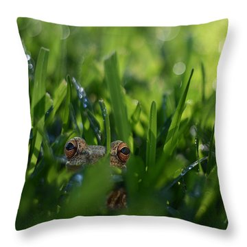 Throw Pillow featuring the photograph Serendipity by Laura Fasulo