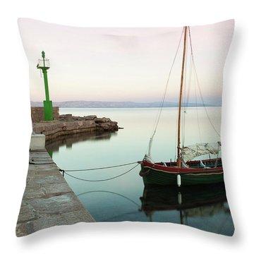 Serene Awakening Throw Pillow