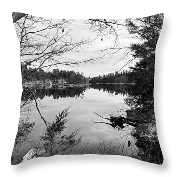 Serene Fall  Throw Pillow
