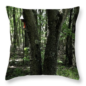 Throw Pillow featuring the photograph Serene In Green by Michelle Audas