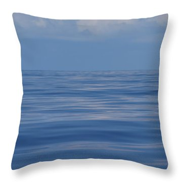 Serene Pacific Throw Pillow