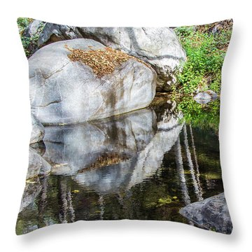 Serene Reflections Throw Pillow