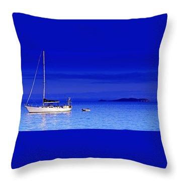 Serene Seas Throw Pillow by Holly Kempe