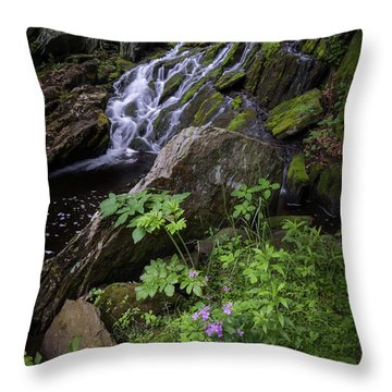 Throw Pillow featuring the photograph Serene Solitude by Bill Wakeley