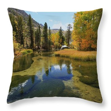 Serene Stream Throw Pillow