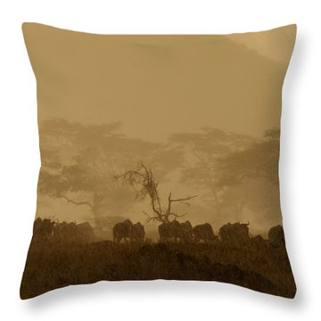 Serengeti Monsoon Throw Pillow