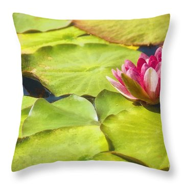 Serenity And Solitude Throw Pillow