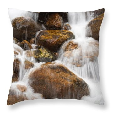 Serenity Central Throw Pillow