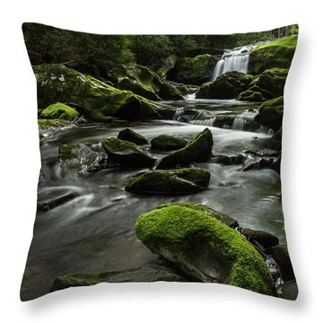 Throw Pillow featuring the photograph Serenity  by Julie Andel