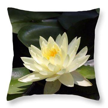 Serenity Throw Pillow by Katherine White