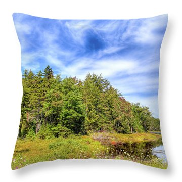 Throw Pillow featuring the photograph Serenity On Bald Mountain Pond by David Patterson