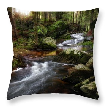 Throw Pillow featuring the photograph Serenity Sunrise by Bill Wakeley