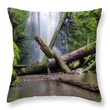 Serentiy Throw Pillow
