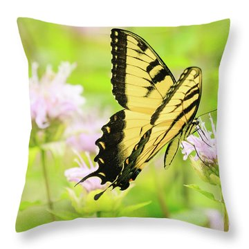 Series Of Yellow Swallowtail #4 Of 6 Throw Pillow