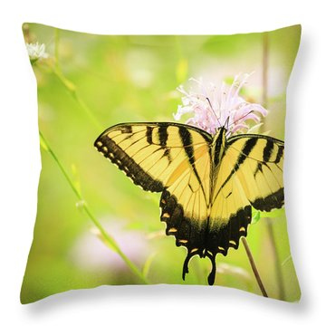 Series Of Yellow Swallowtail #6 Of 6 Throw Pillow