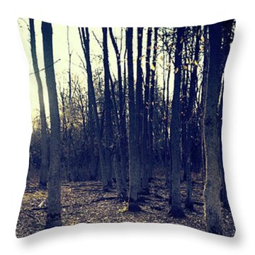Series Silent Woods 1 Throw Pillow