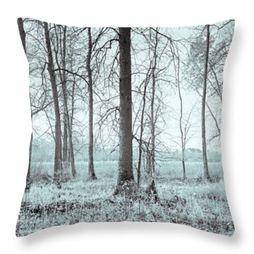Series Silent Woods 2 Throw Pillow