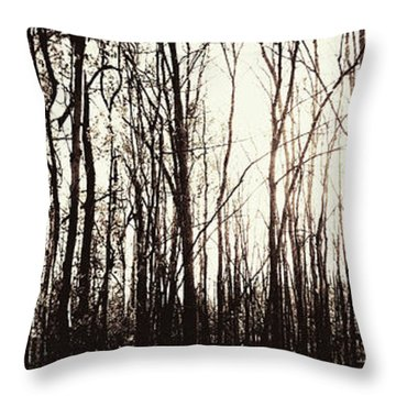 Series Silent Woods 3 Throw Pillow