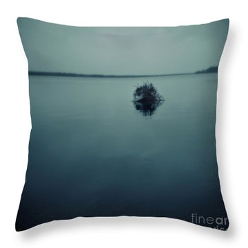 Series Wood And Water 1 Throw Pillow