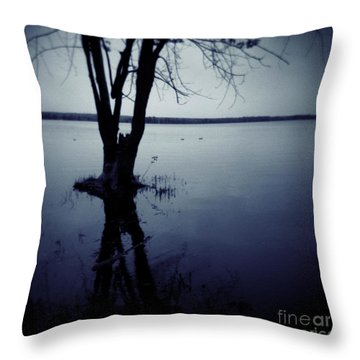 Series Wood And Water 2 Throw Pillow