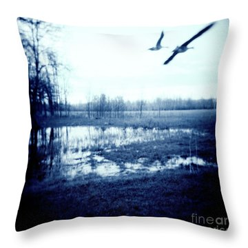 Series Wood And Water 3 Throw Pillow