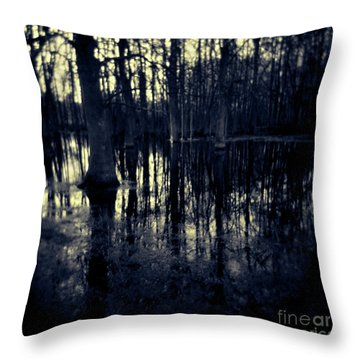 Series Wood And Water 4 Throw Pillow