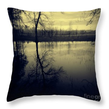 Series Wood And Water 5 Throw Pillow