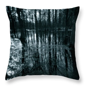 Series Wood And Water 7 Throw Pillow