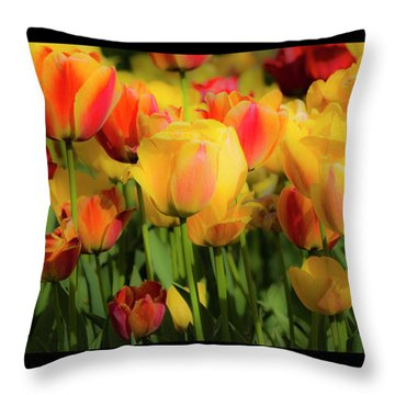 Throw Pillow featuring the photograph Seriously Spring - Bordered by Wendy Wilton
