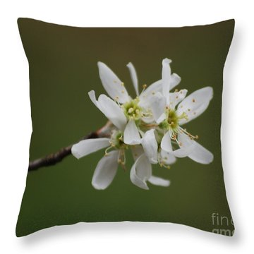 Serviceberry Bloom Throw Pillow