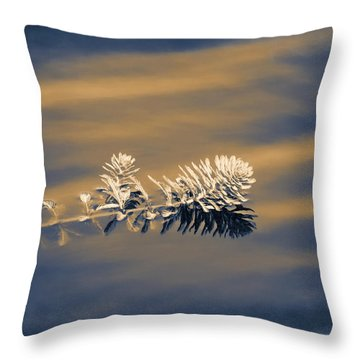 Throw Pillow featuring the photograph Set Apart by Carolyn Marshall