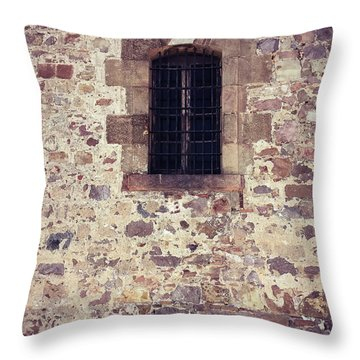 Throw Pillow featuring the photograph Set In Stone by Colleen Kammerer