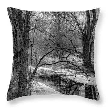 Set On Defrost Throw Pillow