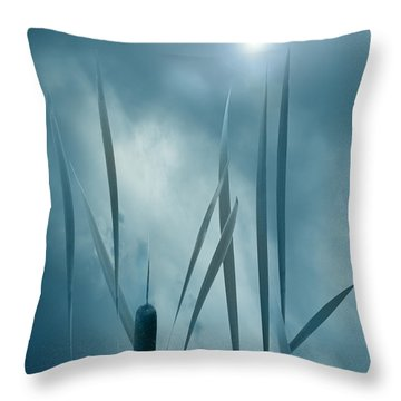 Set The Controls For The Heart Of The Sun Throw Pillow