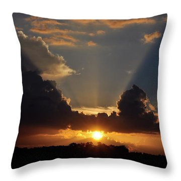 Throw Pillow featuring the photograph Setting Softly by Jan Amiss Photography