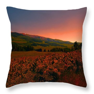 Setting Sun In Crested Butte Throw Pillow