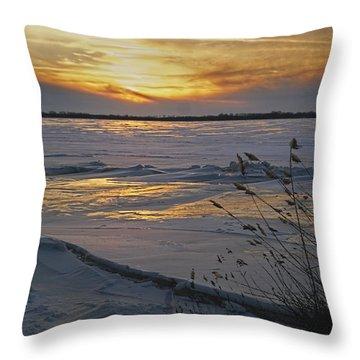 Setting Sun Throw Pillow by Judy Johnson