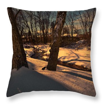 Setting Sun On A Winters Day Throw Pillow by Mikki Cucuzzo